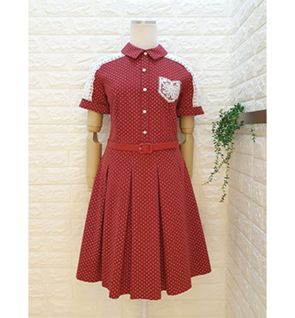 Shouder Lace Polka Dot Dress