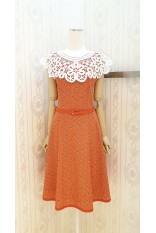Orange Lace Collar Dress